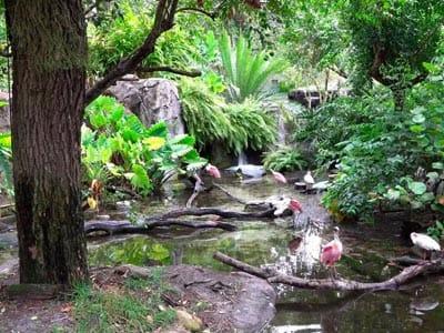 oasis-exhibits